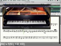 Музыкальная Теория Для Всех (Части 1-3) (2015) Видеокурс