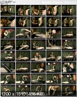 Unruly Prisoner (2010/DVDRip)