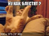 Фотоподборка '220V' 13.12.15