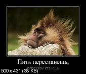 Демотиваторы '220V' 22.12.15