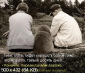 Позитивные котэ 15.01.16