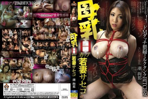 Breast Milk H Cup Wife Whore Shioaya (2015) DVDRip