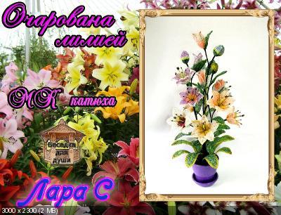 http://i73.fastpic.ru/thumb/2016/0223/66/d969bb8789ba4a7ca8be81009020d766.jpeg
