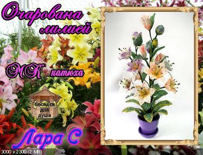 http://i73.fastpic.ru/thumb/2016/0223/fa/a02ebfc1954e17ff9256387b11c140fa.jpeg