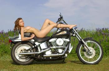 0014 Harley Luba