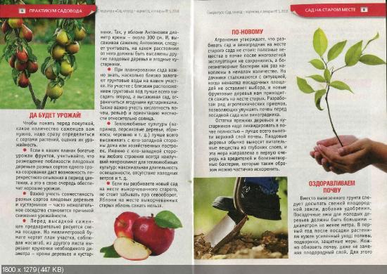 Сад, огород - кормилец и лекарь. Спецвыпуск №6 (март 2016)