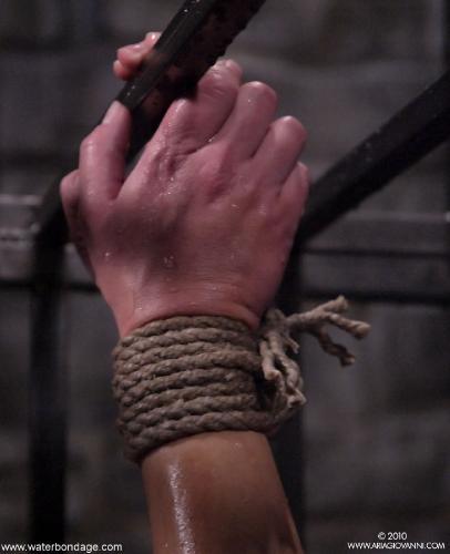 1832 fet Cage