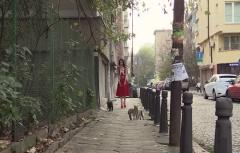 The Latex Lady in Red and the Cats
